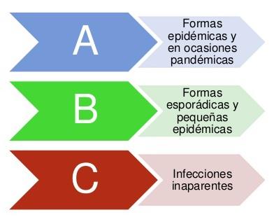 Tipos de gripe
