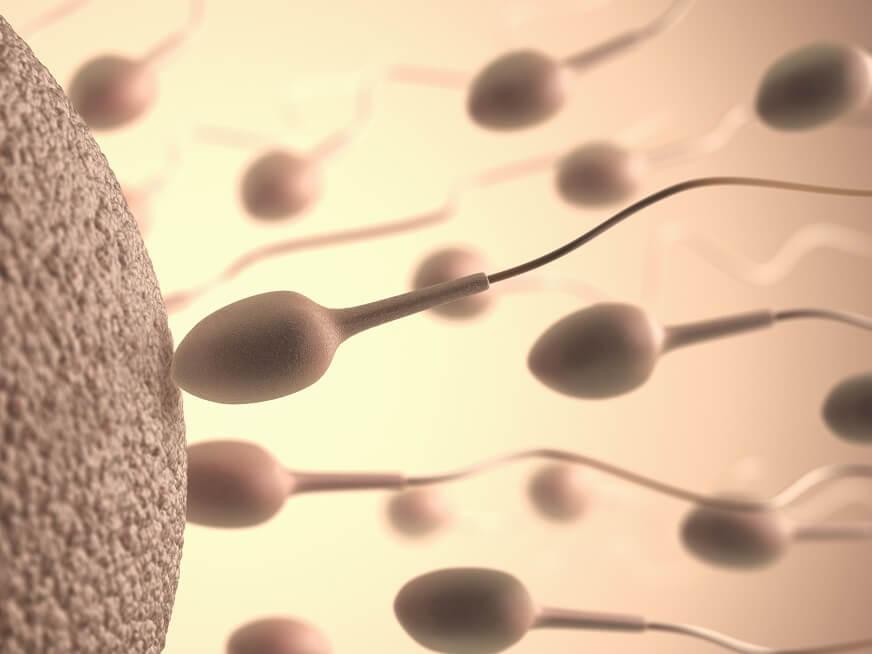 Dónde hacer espermogramas: hospitales y centros de diagnóstico que realizan análisis de semen